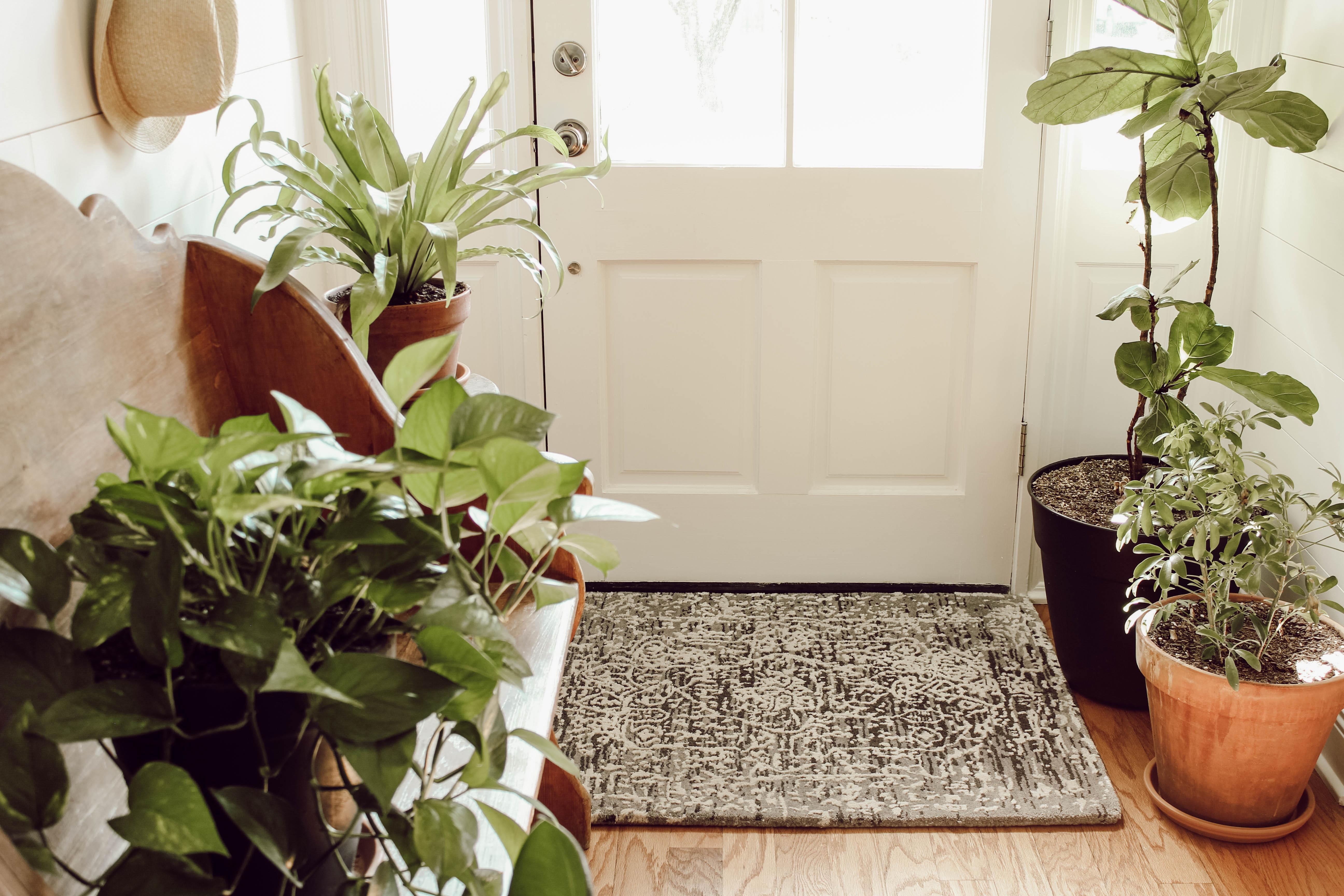 Yün kilimler, her oda için mükemmel bir aksesuardır.